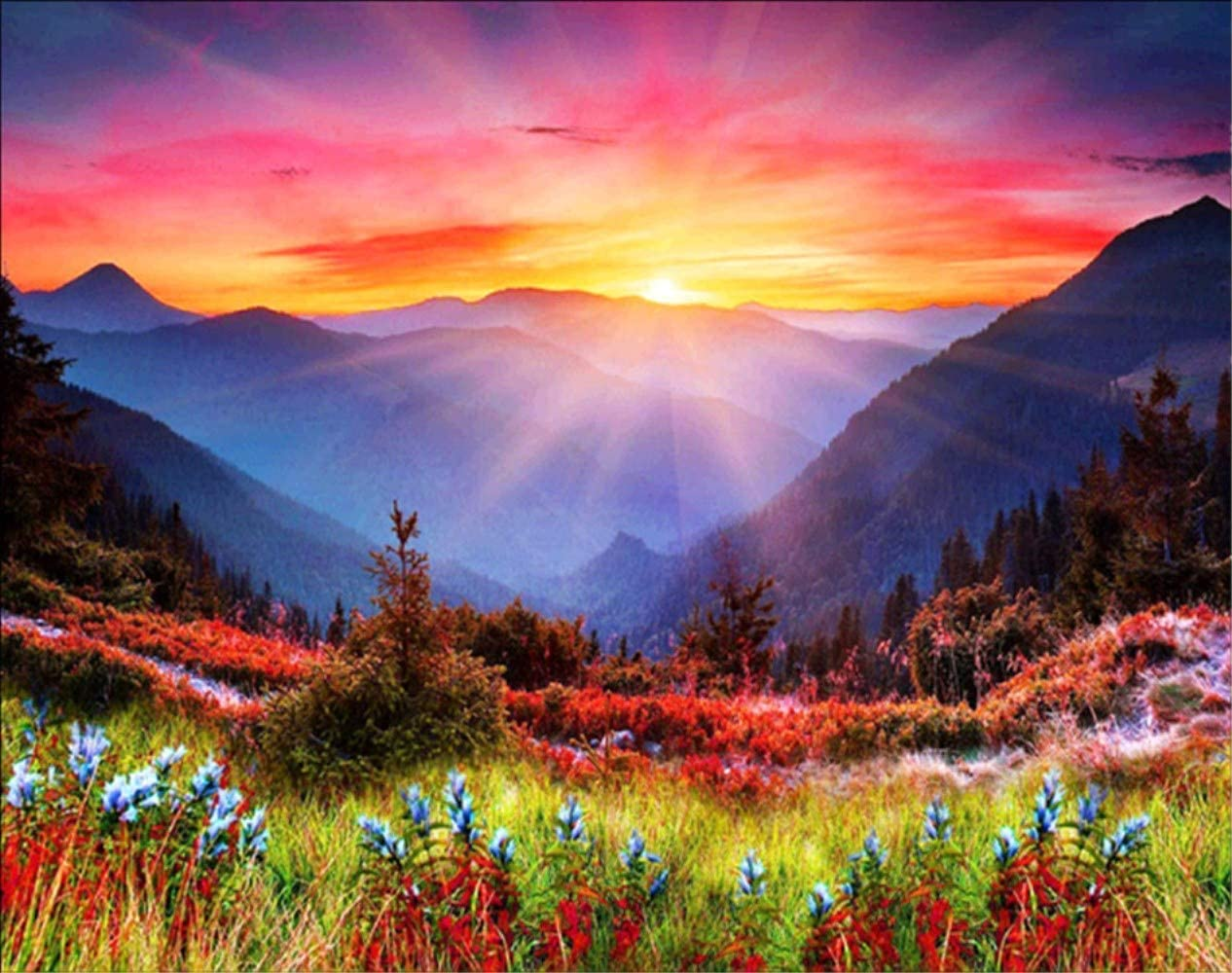 Mountain Flower Sunrise Diamond Painting - PigPigBoss 5D Full Diamond Embroidery Arts, Crafts, Sewing Cross Stitch Kits - Crystal Diamond Dots Kits for Adults (15.7 x 11.8 inches)