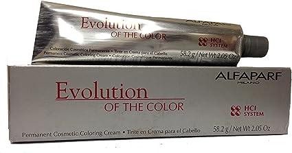 Alfaparf Tinte Capilar 1020-90 ml: Amazon.es: Belleza