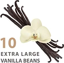"""Extra Large Organic Vanilla Beans (Grade A1 Gourmet) 