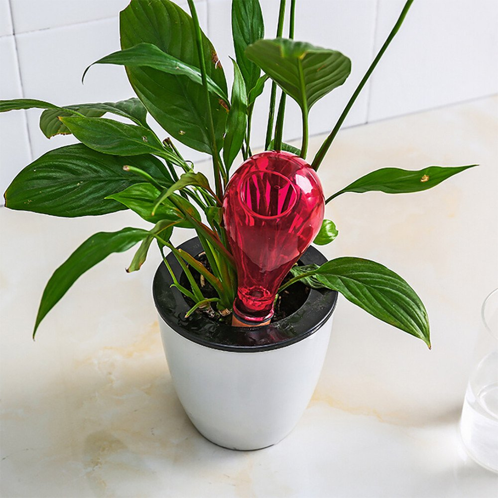 Xindda Automatic Watering Device Houseplant Plant Pot Bulb Globe Garden House,Vacation Potted Plant Watering Irrigation Control Valve Switch for Garden Plants Indoor/Outdoor