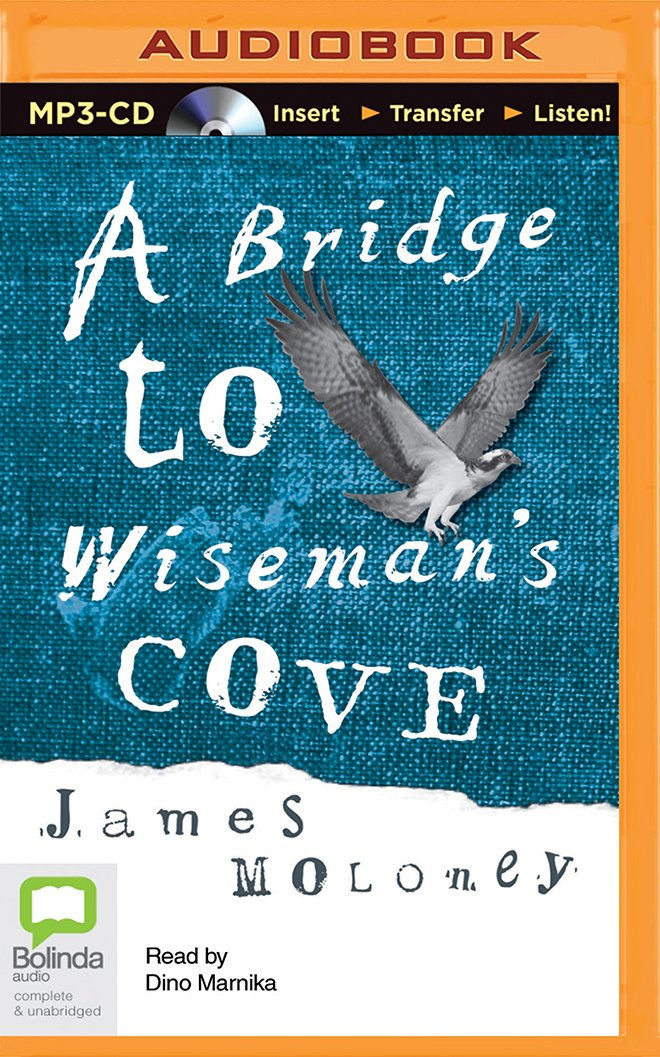 Read Online A Bridge to Wiseman's Cove pdf