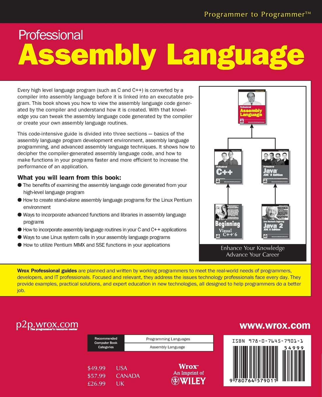 Buy Professional Assembly Language (Programmer to Programmer