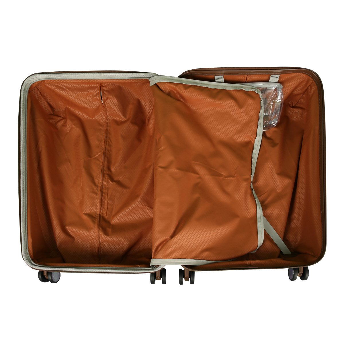 03abf288f4 Amazon.co.jp: デルセー スーツケース DELSEY PROMENADE プロムナード デルセー スーツケース キャリーケース Sサイズ  57.5cm ビジネス 出張 (シルバー01): ホーム& ...