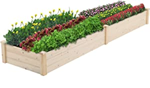 BonusAll Outdoor Garden Bed Planter Wooden Elevated Vegetable and Fruit Herb Growing for Patio Deck Balcony Outdoor Gardening, 8 Feet Natural