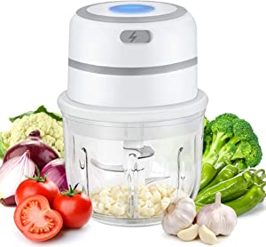 300 ML Glass Bowl Electric Food Processor and Blender, Mini Garlic Chopper, Waterproof Ginger Cutter, Meat Grinder, Kitchen Gadgets 2021 for Pepper, Fruit, Vegetable, Onion and Chili