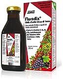 Floradix Iron & Vitamin Formula Liquid 250ml