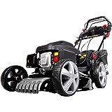 viron benzin kehrmaschine 11 ps elektrostarter schneeschieber motorbesen baumarkt. Black Bedroom Furniture Sets. Home Design Ideas