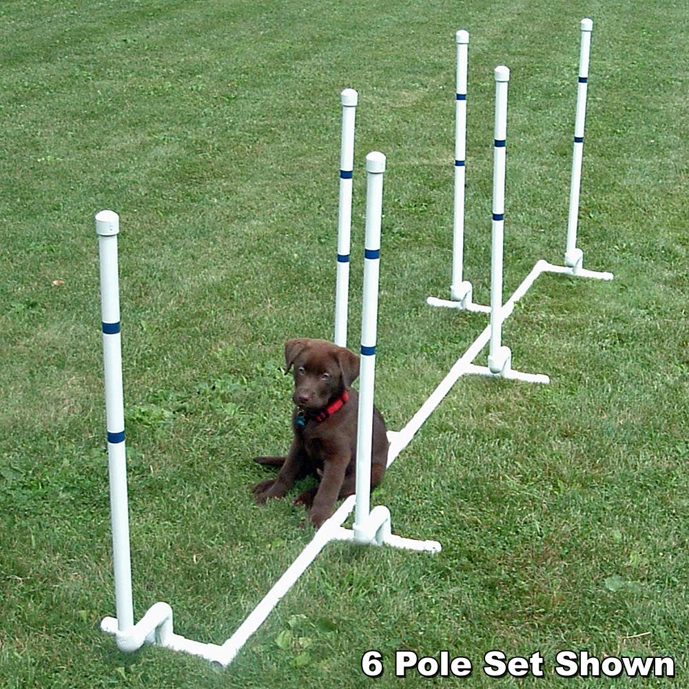 Affordable Agility Channel Weave 12 Pole Set by Affordable Agility