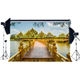 LYLYCTY 7x5ft Backdrop Thailands Unique Buddhist Temple Architecture Photography Backdrop Photo Backdrops Customized Studio Photography Backdrop Background Studio Props LYXC231