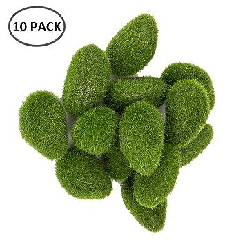 ZhongYeYuanDianZiKeJi Bolas de Musgo para Acuario o pecera,Moss Ball Pelota de Musgo Plantas acuáticas Crecimiento de Algas,14 Piezas: Amazon.es: Productos ...
