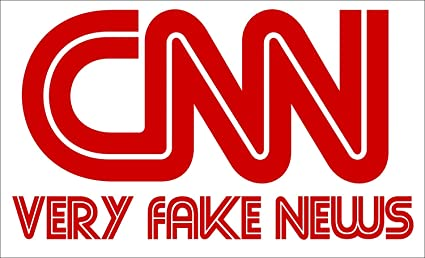 Amazon.com: GHaynes Distributing Rectangular CNN Very Fake News ...
