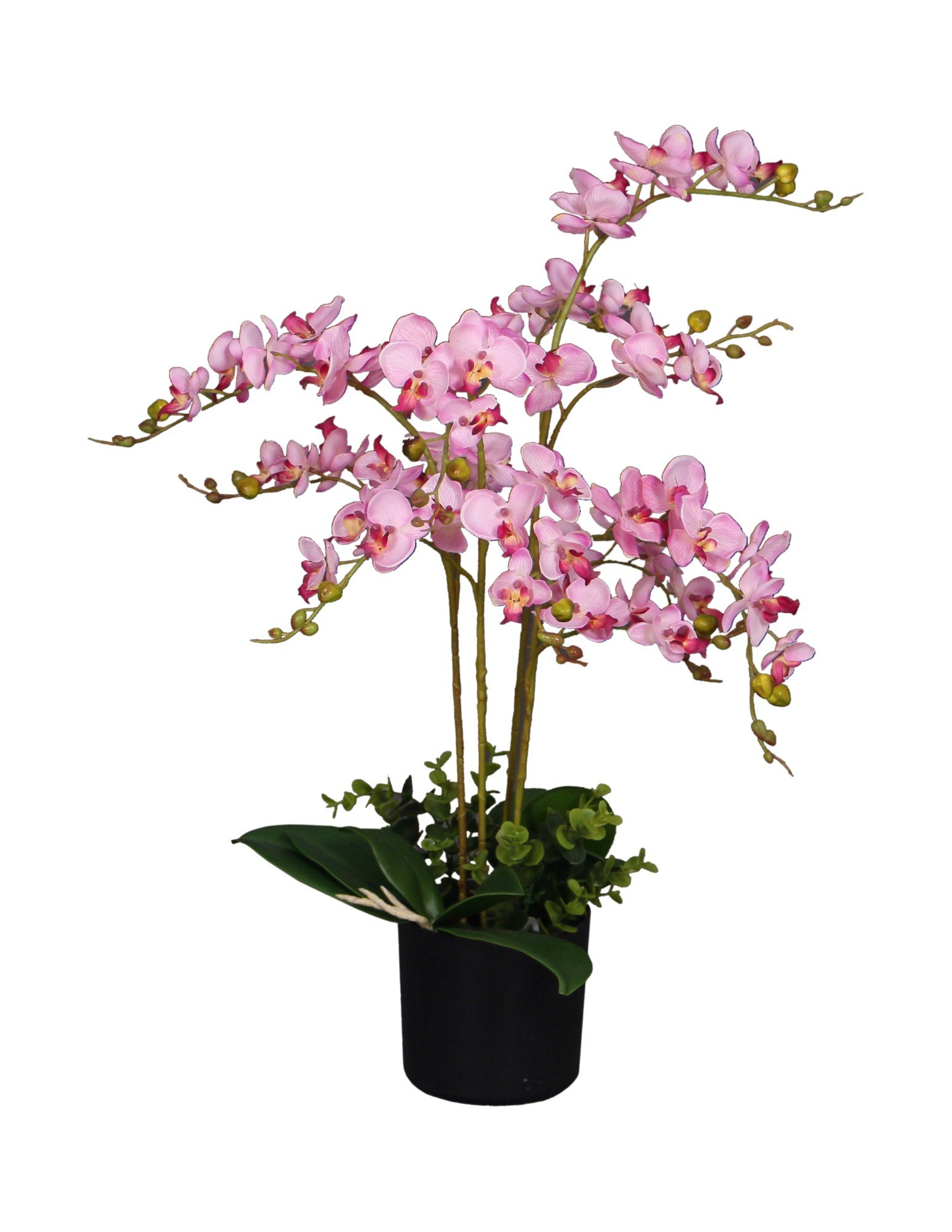 AMERIQUE AMP3611 Unique and Gorgeous Pink Orchid Artificial Silk Flower Plant, with Nursery Pot, Feel Real Technology, Super Quality, 2.5', Pink and Emerald Green