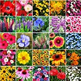 Search : Pacific Northwest Wildflower Seed Mix - Annuals and Perennials