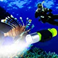 BlueFire 1100 Lumen CREE XM-L2 Professional Diving Flashlight, Bright Submarine Light Scuba Safety Lights Waterproof Underwater Torch for Outdoor Under Water Sports (Yellow)