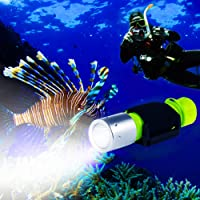 BlueFire 1100 Lumen CREE XM-L2 Professional Diving Flashlight, Bright LED Submarine Light Scuba Safety Lights Waterproof…