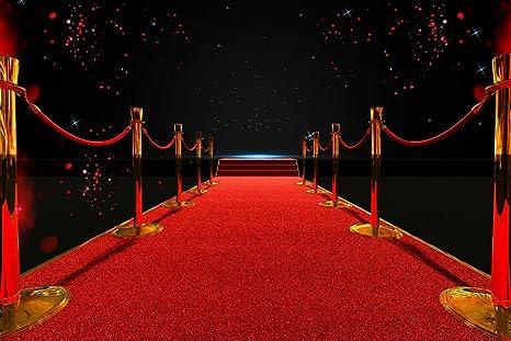 10 x 6,5 m sin costuras largo alfombra roja fondo para