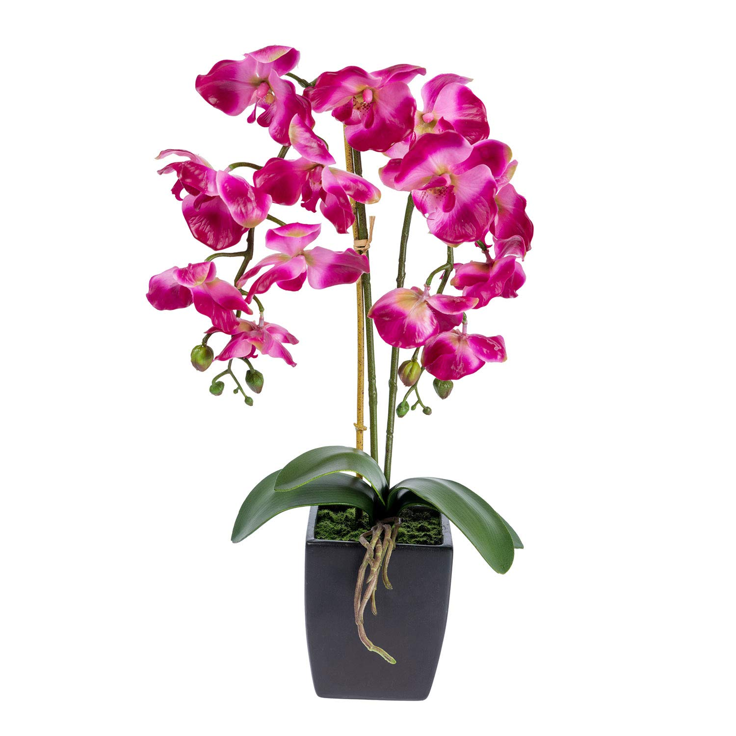 Homescapes Dark Pink Artificial Orchid with Lifelike Silk Flowers and Realistic Green Leaves Cerise Oriental Phalaenopsis Orchid Flower in Mat Black Square Planter Pot 60cm Tall for Indoor Decoration