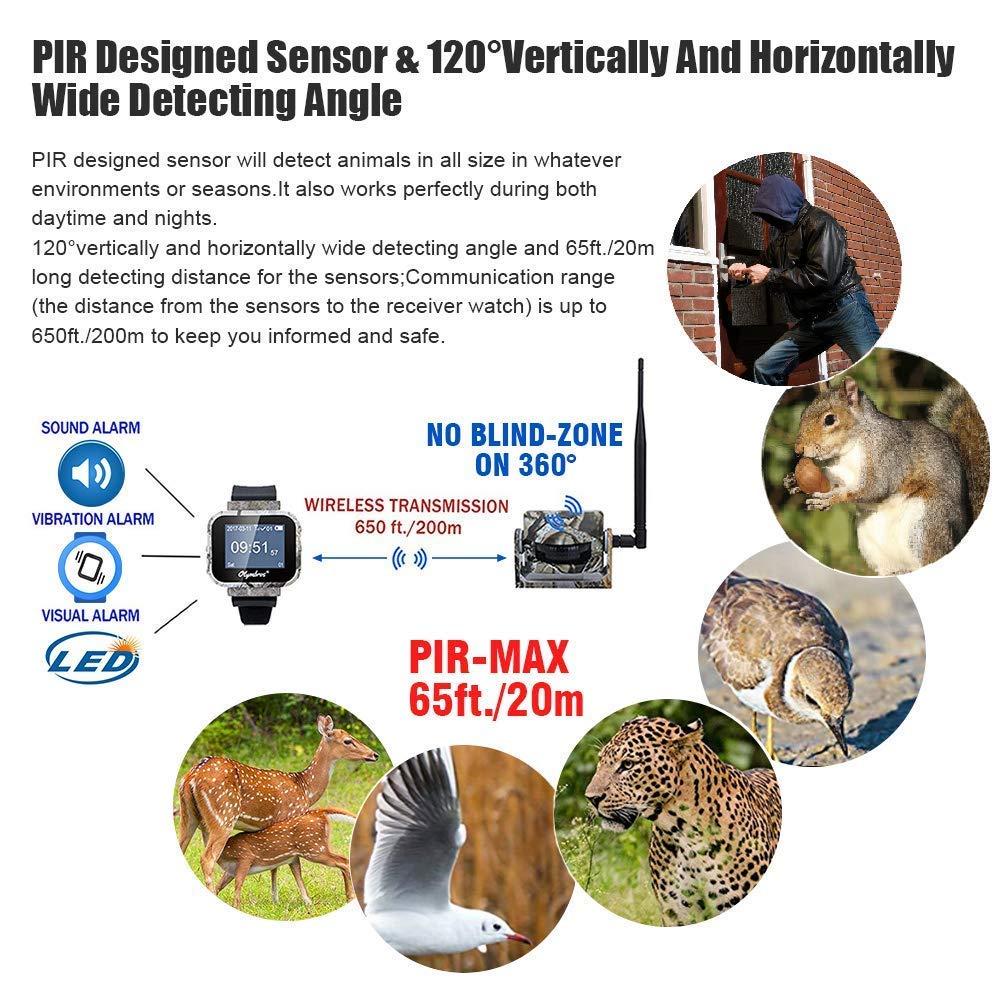 Olymbros Detector de Movimiento 360°65ft Inalámbrico Caza Trail Sistema de Alarma: Amazon.es: Deportes y aire libre
