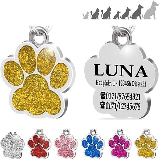 Iberiagifts - Placa Chapa de identificación Personalizada para Collar Perro Gato Mascota grabada (Dorada): Amazon.es: Productos para mascotas