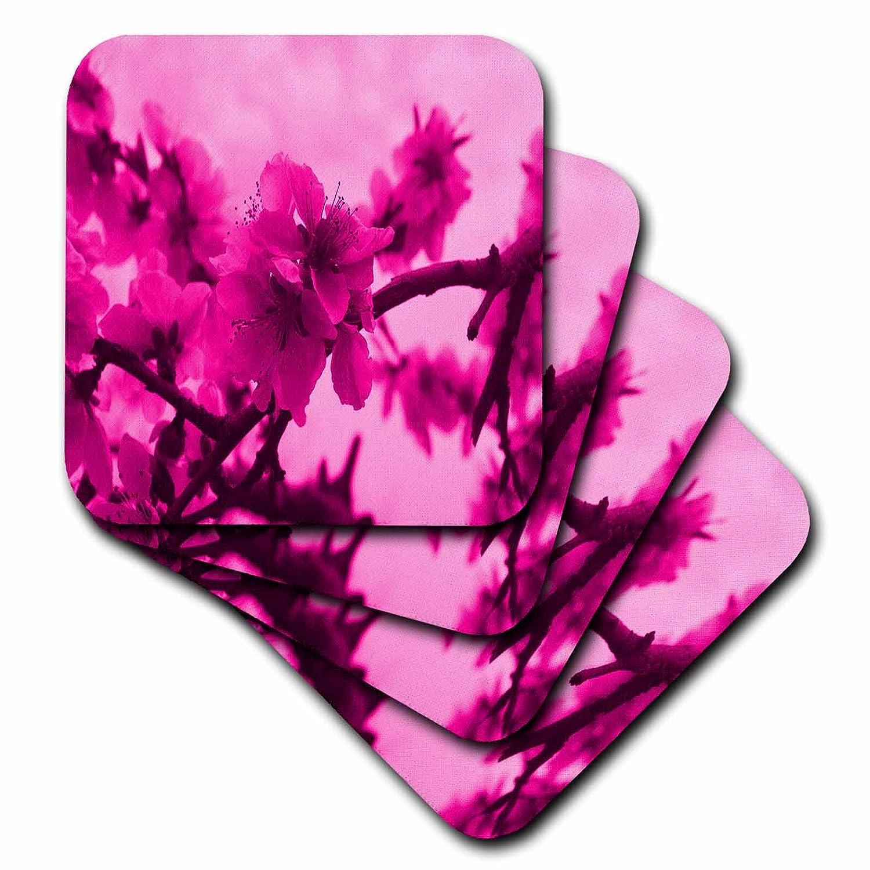 (set-of-4-Ceramic) - 3dRose cst_9326_3 Floral Blossom in Pink-Ceramic Tile Coasters, Set of 4   B004KPV5VE