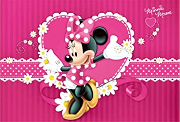 Amazon.com: Fondo de fotos rosa Minnie Mouse fondo de ...