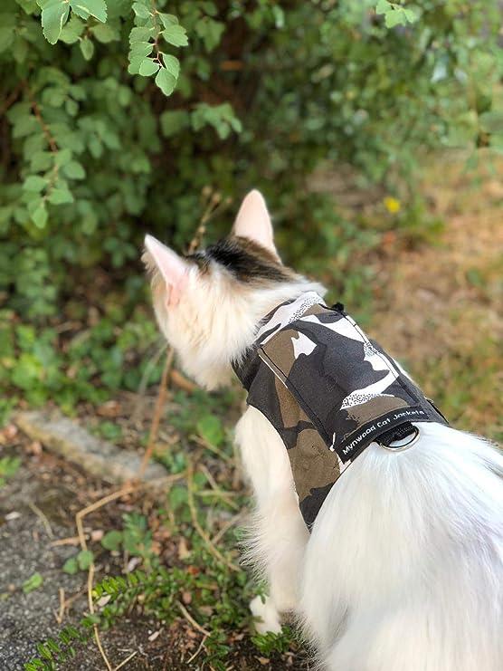 Arnés para gatos, de Mynwood, con diseño de camuflaje polar, para adultos, a prueba de escapes: Amazon.es: Productos para mascotas