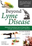 Beyond Lyme Disease: Healing the Underlying Causes of Chronic Illness in People with Borreliosis and Co-Infections