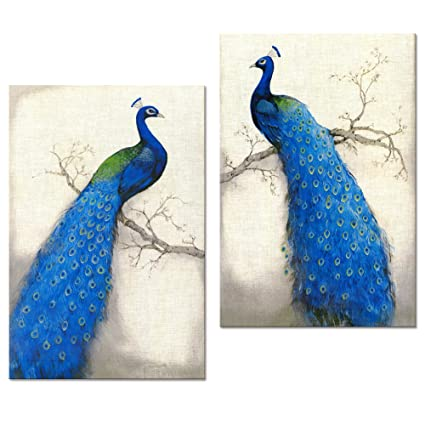 6ccf4f5cd9 Image Unavailable. Image not available for. Color: Peacock Canvas Art ...