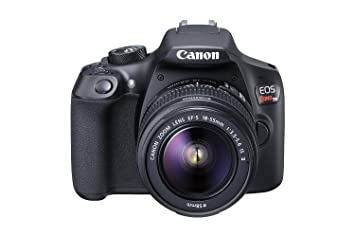Amazon.com: Canon EOS Rebel T6 cámara SLR digital con ...