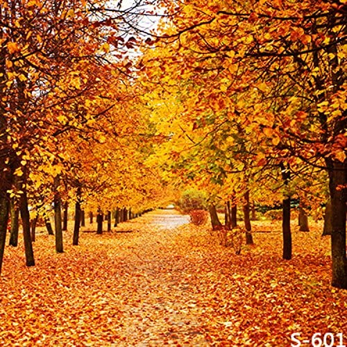 New Scenic Autumn Leaves Backdrop 7x5ft Autumn Leaves Piled in The Forest Photography Background Fall Event Wedding Shower Outdoor Hiking Nature Scenery Countryside Photo Shoot Vinyl Wallpaper
