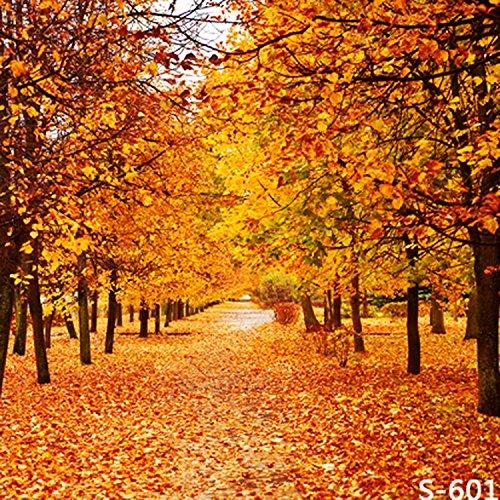 5x7ft Vinyl Autumn Fall Scene Yellow Maple Leaves Photography Studio Backdrop Background