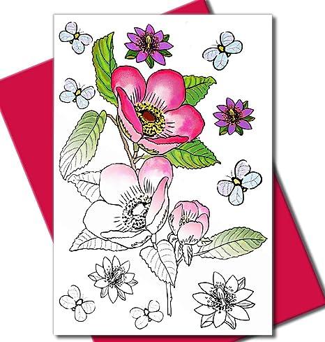 Amazon.com: Art Eclect - Tarjetas de felicitación para ...