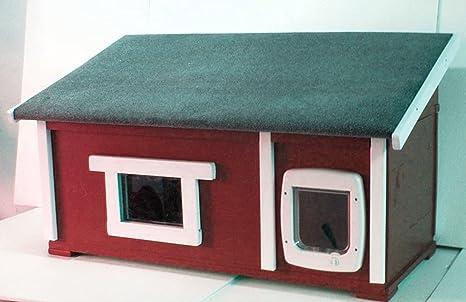 Gato Casa Outdoor aislado