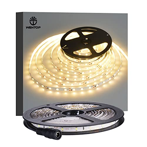 wentop led strip lights waterproof led tape light 12v smd 3528 164 ft 5m