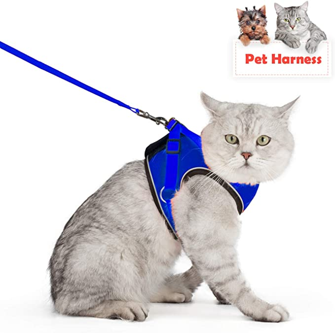 Kamots Beauty Escape Proof Cat Dog Harness and Leash Adjustable Soft Mesh Pet Vest with Reflective Strap for Puppy Kitten Small Pet Walking