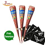 GSN Henna Brown Temporary Tattoo Paste Cone Body Art Painting With Henna Stencil Set (3pcs)
