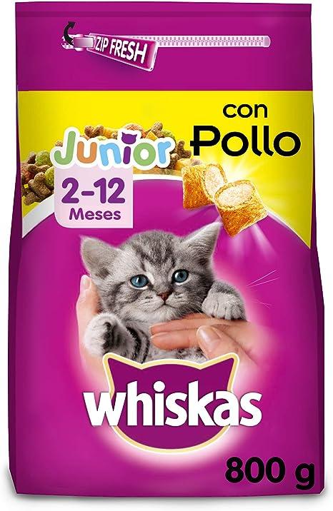 Whiskas Pienso para gatos junior con sabor pollo de 800 g (Pack de ...