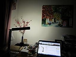 Anker Lumos Led Desk Lamp Eye Caring 4 Modes W 5