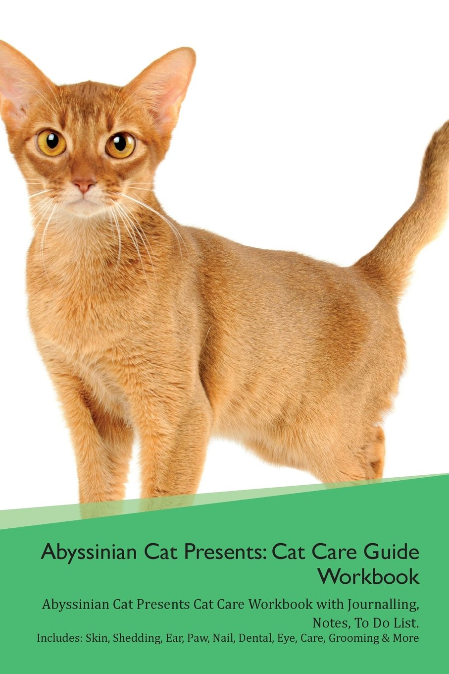 Abyssinian Cat Presents: Cat Care Guide Workbook Abyssinian Cat Presents Cat Care Workbook with Journalling, Notes, To Do List. Includes: Skin, ... Paw, Nail, Dental, Eye, Care, Grooming & More pdf