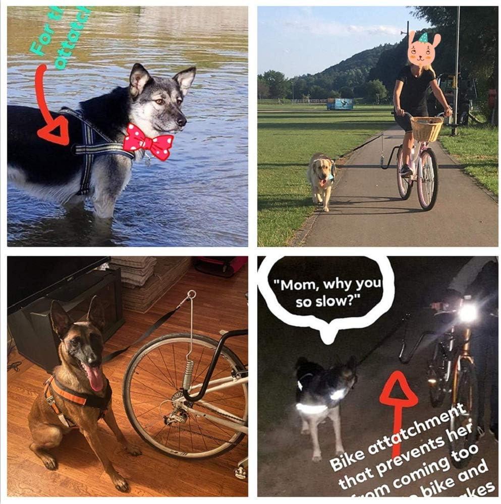 Correa de bicicleta para perros con resorte, entrenador de perros ...