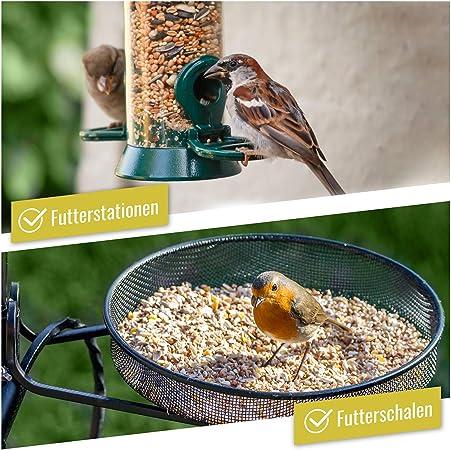 wildtier herz I Alimentación para Pájaros - 5kg sin Trigo I Comida de Aves para Alimentos - Alimento para Aves