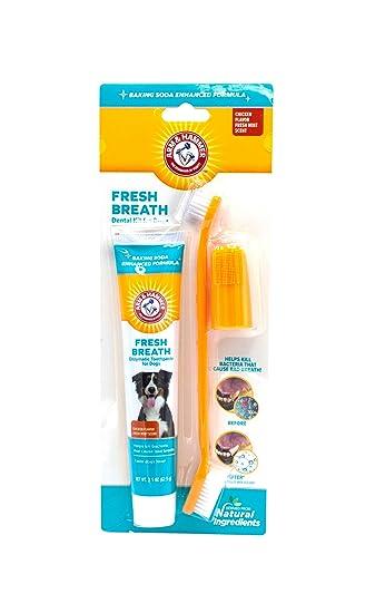 Amazon.com: Juego de cepillo de dientes y pasta de dientes ...