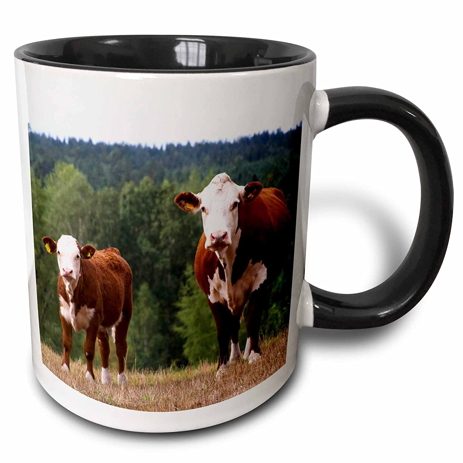 Per Karlsson Two Tone Black Mug 3dRose mug/_82607/_4Calf Cow Brown and white Smaland 11 oz Multicolor EU28 PKA0117 Sweden