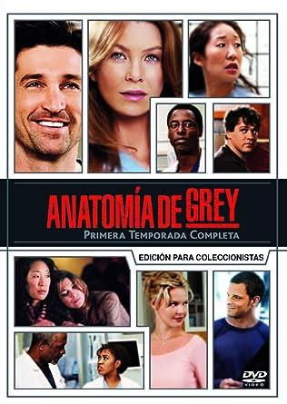 anatomia de grey temporada 1 descargar