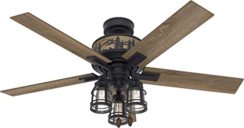 Hunter Mt. Vista Indoor Ceiling Fan