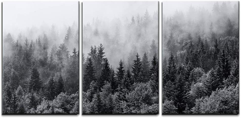 "wall26 - 3 Piece Canvas Wall Art - Misty Forests of Evergreen Coniferous Trees in an Ethereal Landscape - Modern Home Art Stretched and Framed Ready to Hang - 24""x36""x3 Panels"