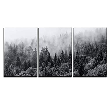 wall26 - 3 Piece Canvas Wall Art - Misty Forests of Evergreen Coniferous Trees in an Ethereal Landscape - Modern Home Decor Stretched and Framed Ready to Hang - 24 x36 x3 Panels
