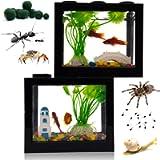Small Betta Fish Tank,Fish Bow Aquarium with Gravel Plants Rocks Feeder,Small Fish Tank for Turtle Reptile Jellyfish…