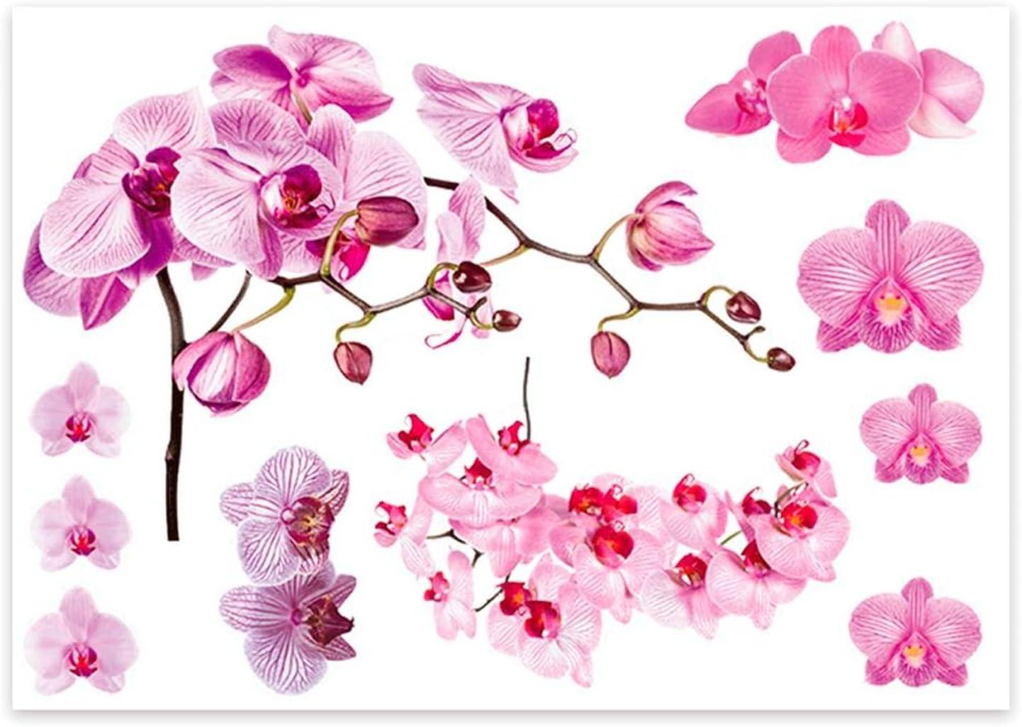 Sud Trading Sticker Nature Orchid/ée 70 x 50 cm Blanc et Rose
