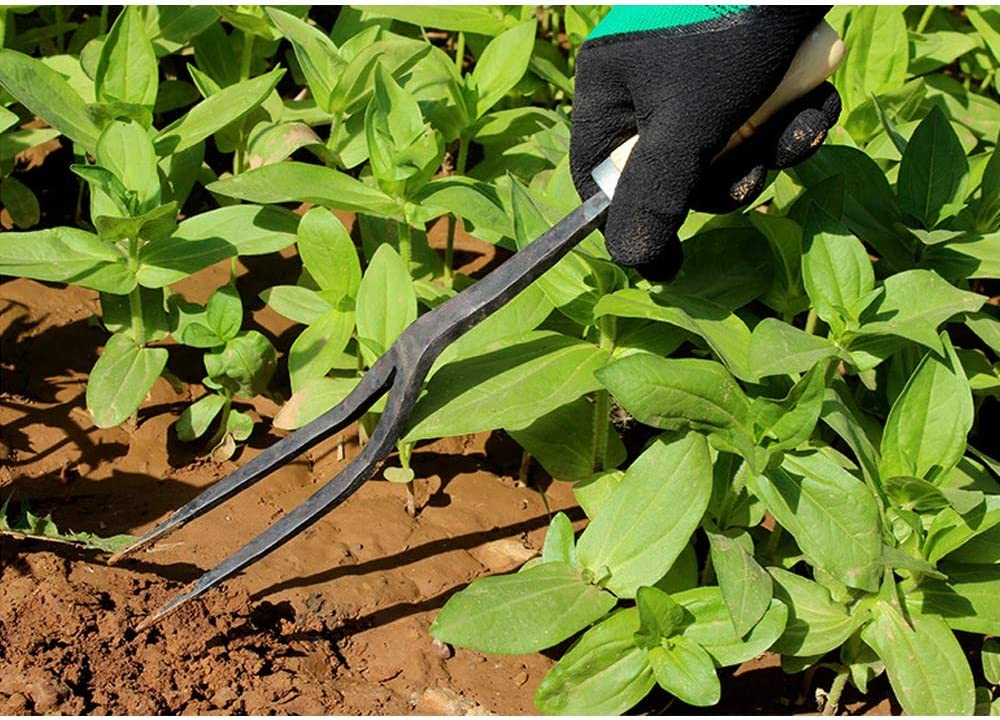 Suitable for Garden Greening Agricultural Household Cultivation Weeding and Excavation,Fork Ancient Quenching Manual Forging of Agricultural Rake//Fork 2strands Whole Forging of Manganese Steel
